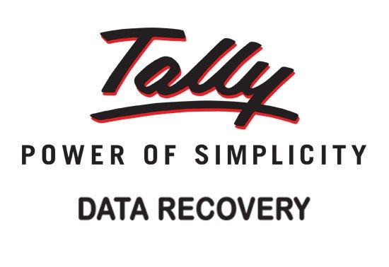 Tally Data Recovery