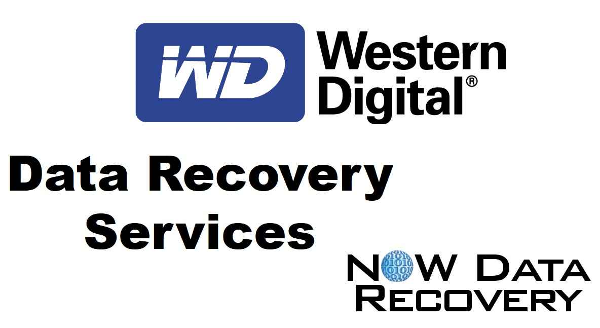 Western digital data recovery services from Now Data Recovery