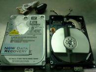WD My Passport data recovery usb hard drive 2 tb disk